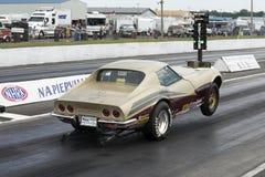 Corvette faisant le wheelie images libres de droits