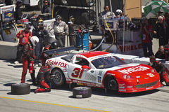 Corvette in pit stop at Grand AM Rolex Races Stock Images