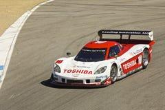 Corvette Potere-Sono alle grandi corse di Rolex Fotografie Stock