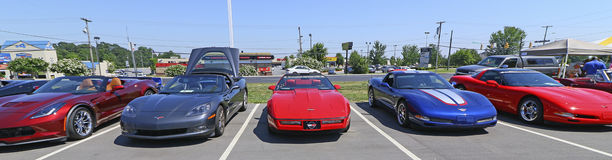 Corvettes Chevrolet Car Show Royalty Free Stock Images