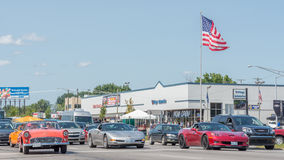 Corvettes and Thunderbird,  Woodward Dream Cruise Stock Photography
