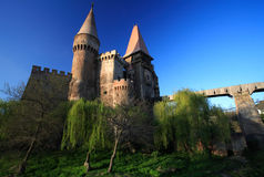 Corvinesti Castle Royalty Free Stock Photos