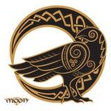 Corvo desenhado à mão em de estilo celta, no fundo do ornamento celta da lua ilustração stock
