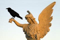 Corvo e anjo imagens de stock