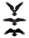 Corvo heráldico mau escuro com asas espalhadas Imagem de Stock Royalty Free
