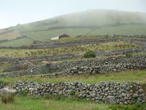 Corvo_island_Azores Imagen de archivo libre de regalías