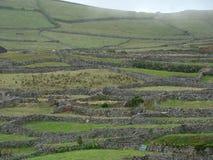 Corvo_island_Azores Fotografía de archivo libre de regalías