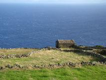 Corvo_island_Azores Royaltyfria Foton
