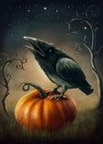 Corvo nero royalty illustrazione gratis