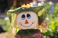 Corvo sveglio di spavento della ragazza, Adelaide Botanic Garden, Australia Meridionale Fotografia Stock