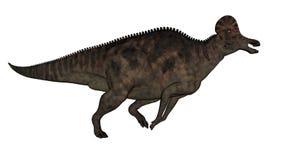 Corythosaurus dinosaur - 3D render. Corythosaurus dinosaur running isolated in white background - 3D render royalty free illustration