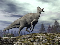 Corythosaurus dinosaur - 3D render. Corythosaurus dinosaur walking upon a rocky hill by cloudy day - 3D render royalty free illustration