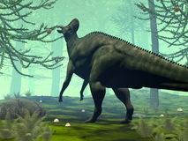 Corythosaurus dinosaur eating - 3D render. Corythosaurus dinosaur eating in a forest of araucaria trees - 3D render royalty free illustration