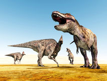 Corythosaurus and Tyrannosaurus Rex Stock Photos
