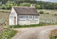 COS De Beze Barn在葡萄园里 免版税库存图片