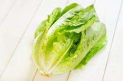 Cos lettuce. Fresh Romaine lettuce on the table Stock Images