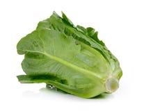 Cos Lettuce ha isolato su fondo bianco Fotografie Stock