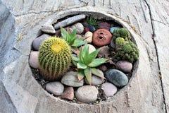 Cosanti Paolo Soleri Studios, valle Scottsdale Arizona, Estados Unidos del paraíso fotografía de archivo libre de regalías