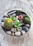 Cosanti Paolo Soleri Studios, valle Scottsdale Arizona, Stati Uniti di paradiso immagini stock
