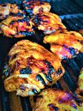Coscie di pollo arrostite del barbecue Fotografie Stock