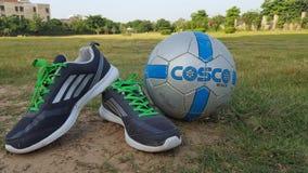Cosco Obrazy Stock