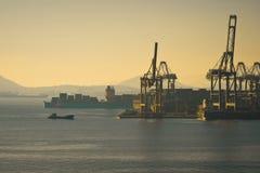 Cosco-Containerbahnhof Lizenzfreie Stockfotos