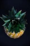 Cose-up di un ananas su un fondo nero fotografia stock