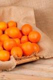 Cosecha anaranjada en cesta Fotografía de archivo