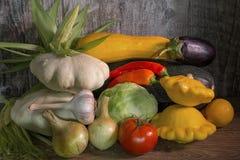 Cosecha colorida del otoño de verduras Foto de archivo libre de regalías
