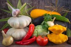 Cosecha colorida del otoño de verduras Fotos de archivo