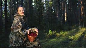 Cosecha Cowberrys de la mujer joven. Imagen de archivo