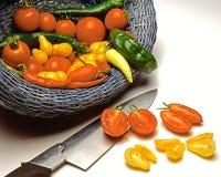 Cosecha culinaria Fotografía de archivo libre de regalías