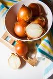 Cosecha de cebollas imagen de archivo libre de regalías