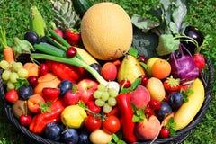 Cosecha de frutas y verduras Fotos de archivo
