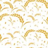 Cosecha de grano del trigo del modelo imagen de archivo