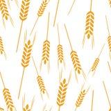 Cosecha de grano del trigo del modelo Imagen de archivo libre de regalías