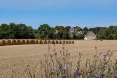 Cosecha de grano en Normandía Imagenes de archivo