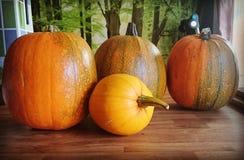 Cosecha de Halloween Fotografía de archivo libre de regalías