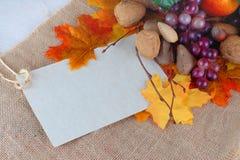 Cosecha de la acción de gracias de frutas y de nueces Fotos de archivo libres de regalías