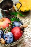 Cosecha de la caída de las frutas Foto de archivo libre de regalías