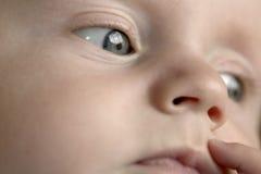 Cosecha de la cara del bebé imagen de archivo libre de regalías