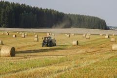 Cosecha de la paja del trigo Foto de archivo libre de regalías