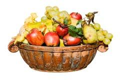 Cosecha de las frutas fotografía de archivo