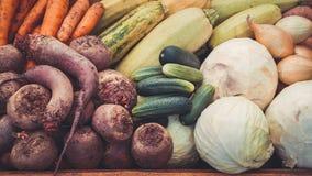 Cosecha de las verduras del otoño Fotos de archivo libres de regalías