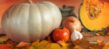 Cosecha de las verduras del otoño Foto de archivo libre de regalías