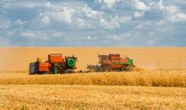 Cosecha de máquinas segadores del trigo en el campo del fondo y el cielo azul Foto de archivo