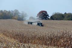 Cosecha de maíz Fotos de archivo