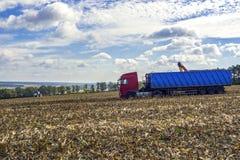 Cosecha de maíz en el campo por una cosechadora con el tr subsiguiente imagenes de archivo