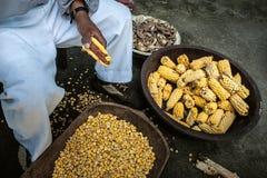 Cosecha de maíz en los Andes fotos de archivo