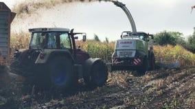 Cosecha de maíz, máquina segador de forraje del maíz en la acción, camión de la cosecha con el tractor almacen de video